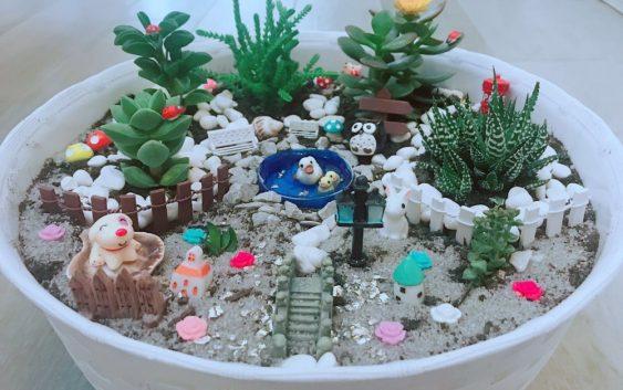 Come creare vasi fai da te con miniature e piante grasse for Vasi piante grasse