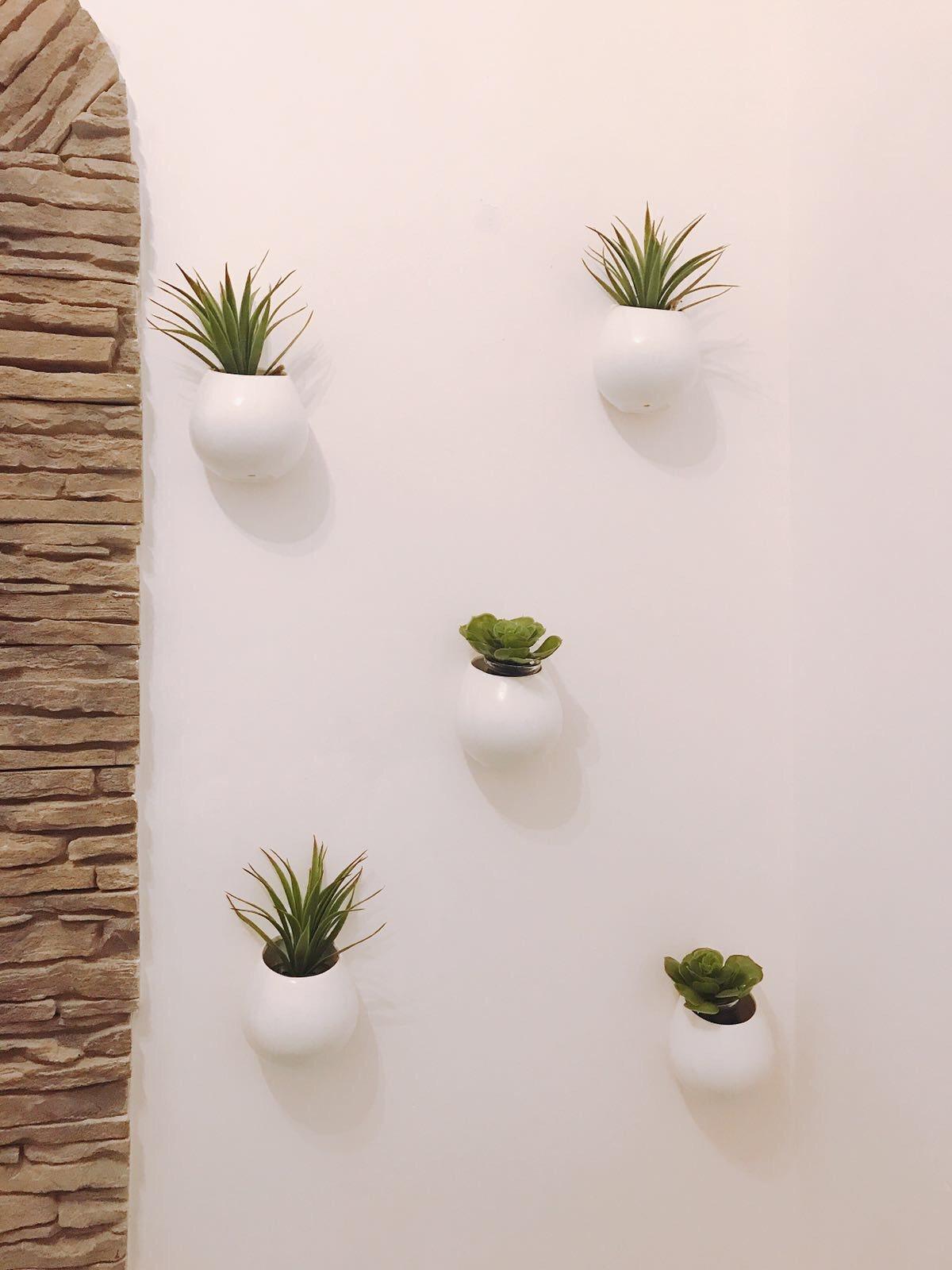 Vasi da appendere con piante in casa idee per arredare - Vasi piante design ...