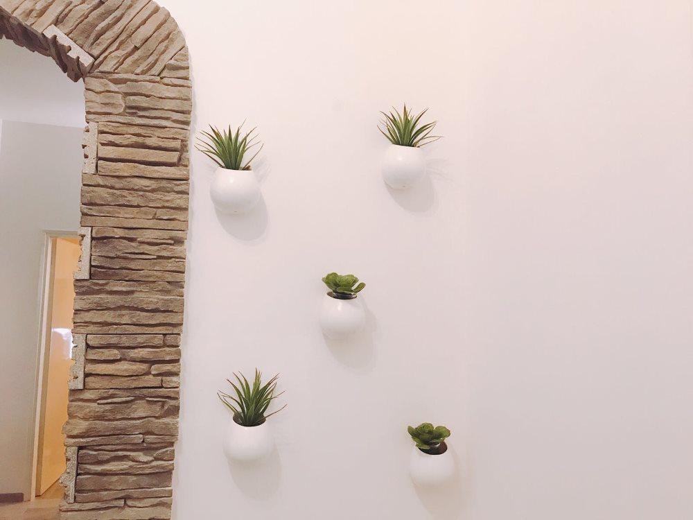 Vasi da appendere con piante in casa idee per arredare for Vasi appesi